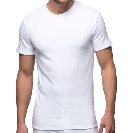 "Camiseta cro. interior canalé m/c 100% alg. ""206"" - abanderado"